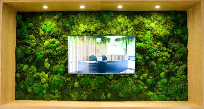 Large living wall inside the Arden marketing suite by Octink